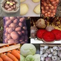 Домашние овощи — Доставка еды