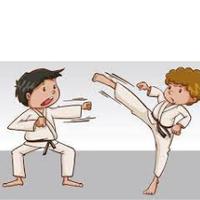 Асоціація традиційного карате-до у Білій Церкві — Спортивні секції