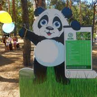 Панда — Зіплайни та мотузкові містечка