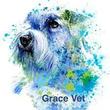 Grace Vet
