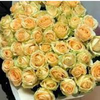 Cult Flora — Магазини квітів