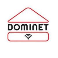 Dominet — Телебачення та інтернет