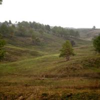 Васильківські Карпати — ландшафтний заказник — Парки