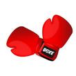 Клуб боксу Боєць