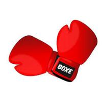 Клуб боксу Боєць — Секції боксу та єдиноборств
